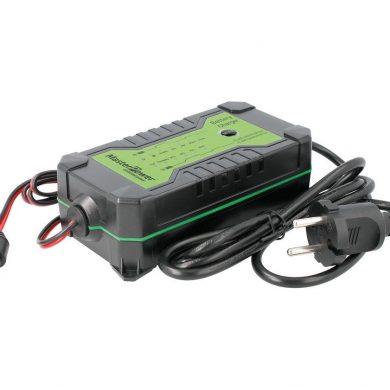 Cargador Baterías 12V y 24V Plomo y LiFePO4